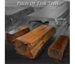 Pieces Of Teak Tree Table And Bench