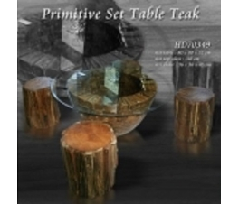 Set Coffee Table Teak wood Twigs